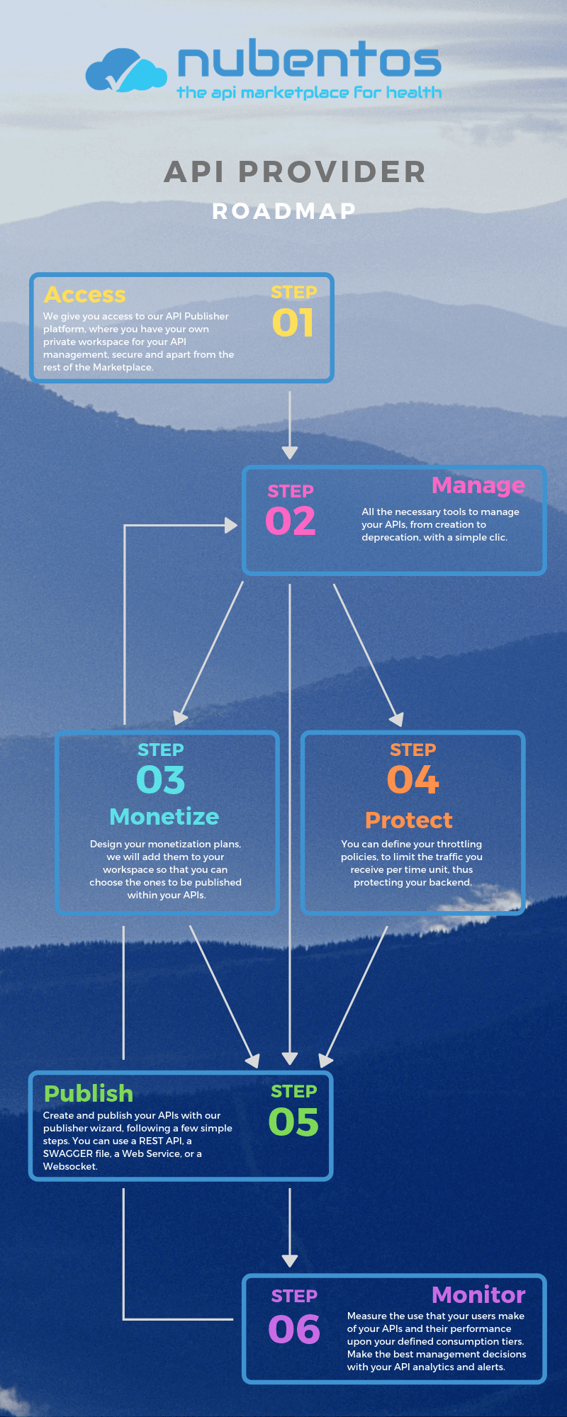 Infographic roadmap for the api provider